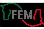 Federación de Ecuestre Mexicana
